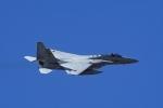 Mochi7D2さんが、茨城空港で撮影した航空自衛隊 F-15J Eagleの航空フォト(写真)