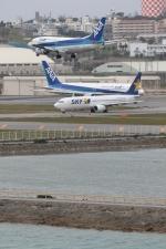 GNPさんが、那覇空港で撮影したエアーニッポン 737-5L9の航空フォト(写真)