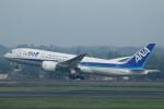 ★azusa★さんが、スカルノハッタ国際空港で撮影した全日空 787-8 Dreamlinerの航空フォト(写真)
