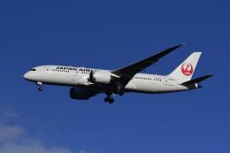 地主さんが、成田国際空港で撮影した日本航空 787-8 Dreamlinerの航空フォト(写真)