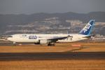 tmkさんが、伊丹空港で撮影した全日空 767-381/ERの航空フォト(写真)
