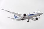 Cozy Gotoさんが、成田国際空港で撮影した全日空 787-8 Dreamlinerの航空フォト(写真)