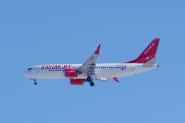 ladyinredさんが、成田国際空港で撮影したイースター航空 737-8-MAXの航空フォト(飛行機 写真・画像)