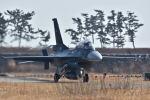 チポさんが、松島基地で撮影した航空自衛隊 F-2Bの航空フォト(写真)