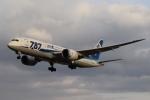 tmkさんが、伊丹空港で撮影した全日空 787-8 Dreamlinerの航空フォト(写真)