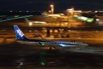 STAR TEAMさんが、中部国際空港で撮影した全日空 737-8ALの航空フォト(写真)