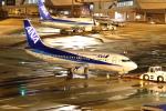 STAR TEAMさんが、中部国際空港で撮影したANAウイングス 737-54Kの航空フォト(写真)