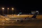 STAR TEAMさんが、中部国際空港で撮影したデルタ航空 767-332/ERの航空フォト(写真)