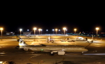 STAR TEAMさんが、中部国際空港で撮影したエティハド航空 787-9の航空フォト(写真)