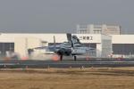 夏みかんさんが、名古屋飛行場で撮影した航空自衛隊 F-15DJ Eagleの航空フォト(飛行機 写真・画像)