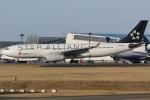 Wings Flapさんが、成田国際空港で撮影した中国国際航空 A330-243の航空フォト(写真)