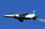 REDさんが、入間飛行場で撮影した航空自衛隊 T-4の航空フォト(写真)