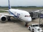 走る男さんが、米子空港で撮影した全日空 787-8 Dreamlinerの航空フォト(飛行機 写真・画像)