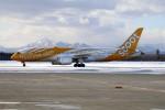 北の熊さんが、新千歳空港で撮影したスクート 787-8 Dreamlinerの航空フォト(飛行機 写真・画像)