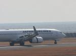 からすさんが、山口宇部空港で撮影した日本航空 737-846の航空フォト(写真)
