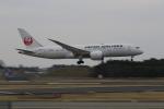 ☆ライダーさんが、成田国際空港で撮影した日本航空 787-8 Dreamlinerの航空フォト(写真)