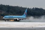 しょうせいさんが、岡山空港で撮影した大韓航空 737-9B5の航空フォト(写真)