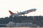 airdrugさんが、成田国際空港で撮影したチェジュ航空 737-8LCの航空フォト(写真)
