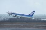 新潟空港 - Niigata Airport [KIJ/RJSN]で撮影された全日空 - All Nippon Airways [NH/ANA]の航空機写真