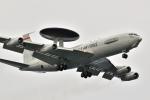 kon chanさんが、嘉手納飛行場で撮影したアメリカ空軍 E-3B Sentry (707-300)の航空フォト(写真)