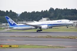 kumagorouさんが、成田国際空港で撮影した全日空 787-9の航空フォト(写真)