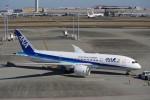 chappyさんが、羽田空港で撮影した全日空 787-8 Dreamlinerの航空フォト(写真)