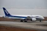 we love kixさんが、関西国際空港で撮影した全日空 787-8 Dreamlinerの航空フォト(写真)