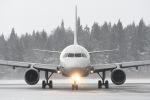 Gg55さんが、秋田空港で撮影した全日空 A320-211の航空フォト(写真)