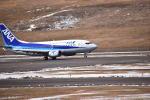 ふくかづさんが、福島空港で撮影したANAウイングス 737-54Kの航空フォト(写真)