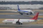 ☆ライダーさんが、成田国際空港で撮影したイースター航空 737-86Jの航空フォト(写真)