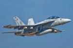 いっち〜@RJFMさんが、新田原基地で撮影したアメリカ海軍 F/A-18F Super Hornetの航空フォト(飛行機 写真・画像)
