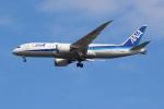 sky-spotterさんが、成田国際空港で撮影した全日空 787-8 Dreamlinerの航空フォト(写真)