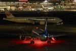飛行機ゆうちゃんさんが、羽田空港で撮影した全日空 787-9の航空フォト(写真)