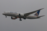 やつはしさんが、成田国際空港で撮影したユナイテッド航空 787-8 Dreamlinerの航空フォト(写真)
