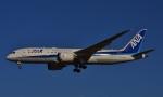 鉄バスさんが、成田国際空港で撮影した全日空 787-8 Dreamlinerの航空フォト(写真)