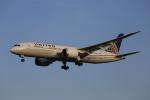 みるぽんたさんが、成田国際空港で撮影したユナイテッド航空 787-8 Dreamlinerの航空フォト(写真)