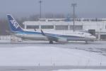sumihan_2010さんが、紋別空港で撮影した全日空 737-881の航空フォト(写真)