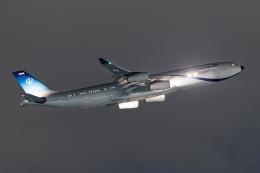 多摩川崎2Kさんが、羽田空港で撮影したイラン・イスラム共和国政府 A340-313Xの航空フォト(写真)