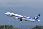 ワイエスさんが、鹿児島空港で撮影した全日空 737-8ALの航空フォト(写真)