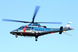 なごやんさんが、名古屋飛行場で撮影した福島県警察 A109E Powerの航空フォト(飛行機 写真・画像)