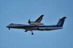 鉄バスさんが、成田国際空港で撮影したANAウイングス DHC-8-402Q Dash 8の航空フォト(写真)