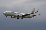 かろすけさんが、宮崎空港で撮影した日本航空 737-846の航空フォト(写真)