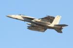 OMAさんが、岩国空港で撮影したアメリカ海軍 F/A-18E Super Hornetの航空フォト(飛行機 写真・画像)