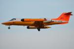 350JMさんが、厚木飛行場で撮影した海上自衛隊 U-36Aの航空フォト(写真)