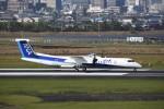 kumagorouさんが、宮崎空港で撮影したANAウイングス DHC-8-402Q Dash 8の航空フォト(飛行機 写真・画像)