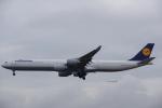 JA8037さんが、フランクフルト国際空港で撮影したルフトハンザドイツ航空 A340-642Xの航空フォト(写真)
