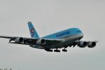 banshee02さんが、成田国際空港で撮影した大韓航空 A380-861の航空フォト(写真)