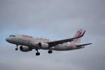 JA8037さんが、フランクフルト国際空港で撮影したチュニスエア A320-214の航空フォト(写真)