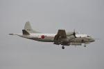 350JMさんが、厚木飛行場で撮影した海上自衛隊 UP-3Cの航空フォト(写真)