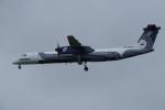 TG36Aさんが、成田国際空港で撮影したオーロラ DHC-8-402Q Dash 8の航空フォト(写真)